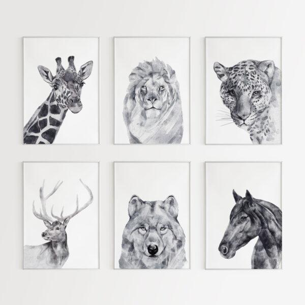 6 stampe di animali in bianco e nero