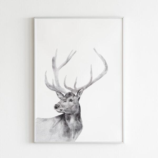 cervo animali bianco nero stampa