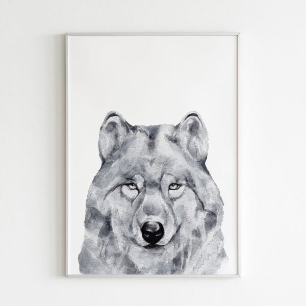 lupo animali bianco nero stampa
